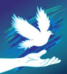 Hand image and bird, pigeon, dove.