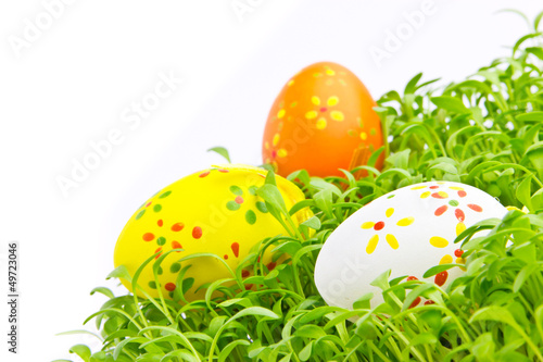 Decorative easter eggs in a grass - 49723046