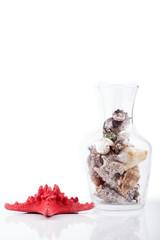 conchas de mar en un jarrón de cristal