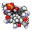 Vitamin B12 (cyanocobalamin) molecule