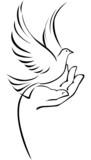 Dove on hand