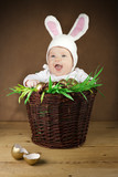 Funny Easter bunny in the basket