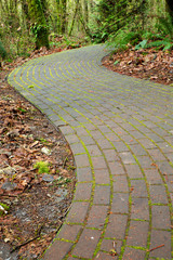 Mossy curved brick path