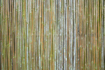 old bamboo wall