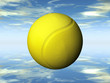 the yellow tennis ball