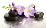 Spa stones and purple flower, isolated on white