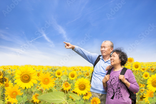 happy senior couple standing in the sunflower garden
