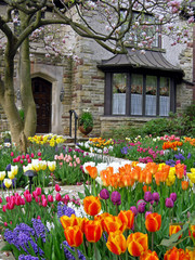 front yard with spring flowers