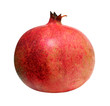 red pomegranate isolated