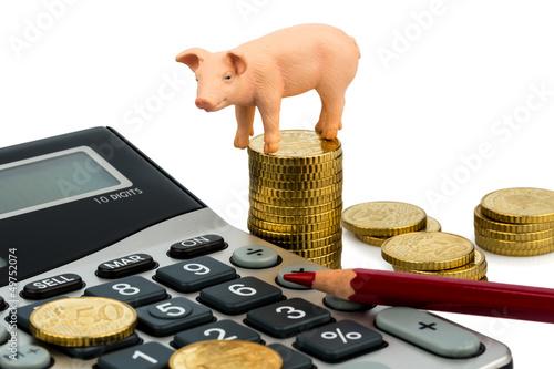 Schwein und Taschenrechner