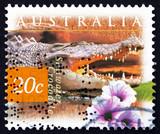 Postage stamp Australia 1997 Saltwater Crocodile and Kangkong Fl poster