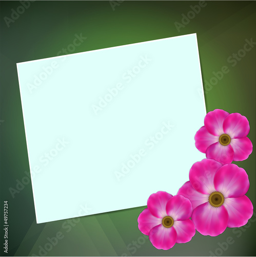 Greeting card on a green background with a flowers