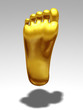 golden Foot sole