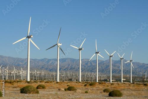 Windmills - 49761458