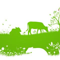 Biologische Landwirtschaft