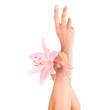 Women's hands with pink lily