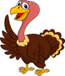 Turkey cartoon waving