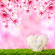 Ein Herz auf einer Frühlingswiese