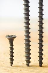 Set of metal screws