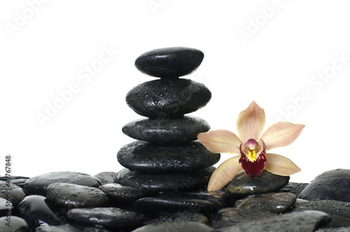 stones stack in balance with orchid flower