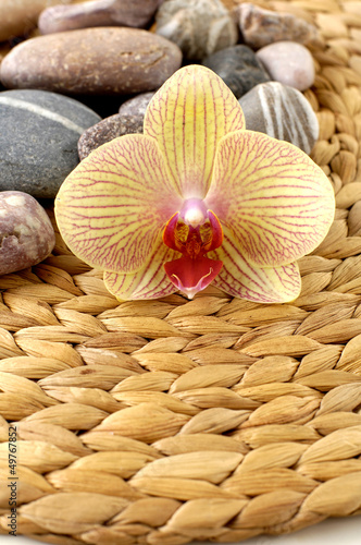 pebble with beautiful orchid on woven mat