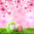 Schäfchen und Osterei auf Frühlingswiese