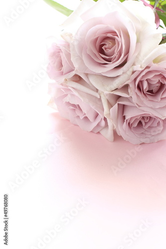 elegant pastel purple roses bouquet for background image