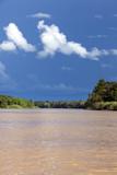 Kinabatangan River, Sabah. Borneo
