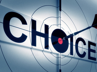 Target Choice Shows Two-way Path Decision
