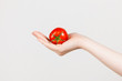 Tomate in der Hand