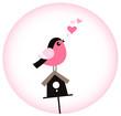 Cute Valentine Bird with a Birdhouse Vector