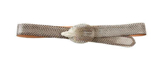 Cobra skin belt