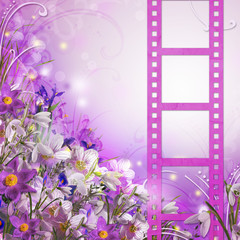 Spring bouquet from white and  purple flowers and film stripe