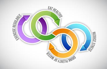 Diagram of healthy life cycle