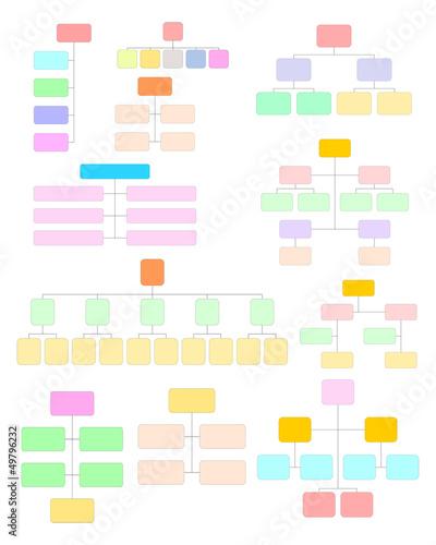Chart - organigramma