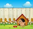 A dog with a dog house inside the fence