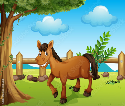 A horse under the tree