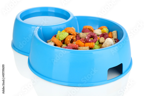 Dry dog treats in bowl isolated on white