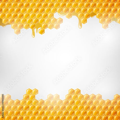Vector Illustration of  Honeycombs - 49802610