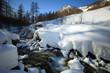 torrent alpin