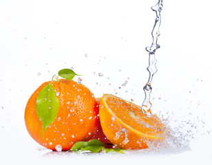 Fresh oranges with water splash, isolated on white background