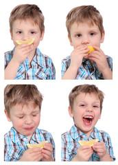 Collage - die Zitrone