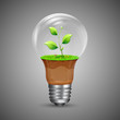 Growing Innovation