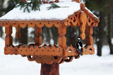 Woodpecker on bird feeder in winter.
