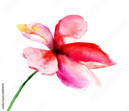 Stylized flowers, © Regina Jersova
