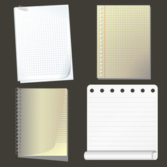 Set of vector paper. Collection Notebook Paper