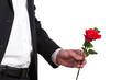 Mann, Hand, Rose, warten