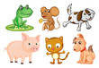 Differrent kinds of land animals