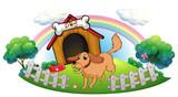 A dog and a rainbow
