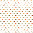 Horses seamless pattern.